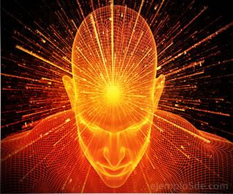 La metafísica es el estudio de lo que está más allá de lo físico y fue creada por Emmanuel Kant.