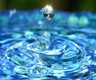 Estado Liquido de la Materia